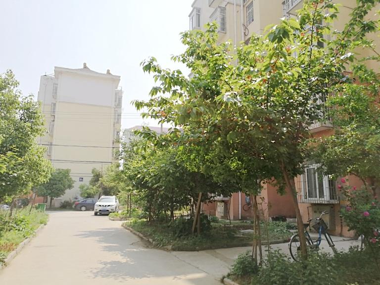 兰亭小区FY-19-69358(9).jpg