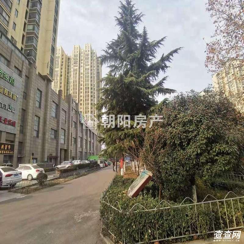 中化国际城DFY-20-145062(12).jpg